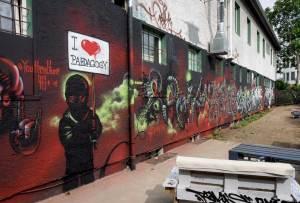 w2014-06-10-em1-graffiti-wiesbaden-kontext-0021